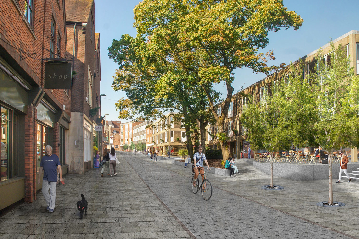 Bottom of Winchester St George Street proposed carless